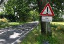 Prophylaktische Bekämpfung des Eichenprozessionsspinners in Hochheim